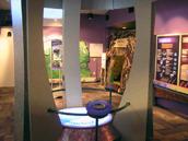 Jorge-Mateo-exhibit