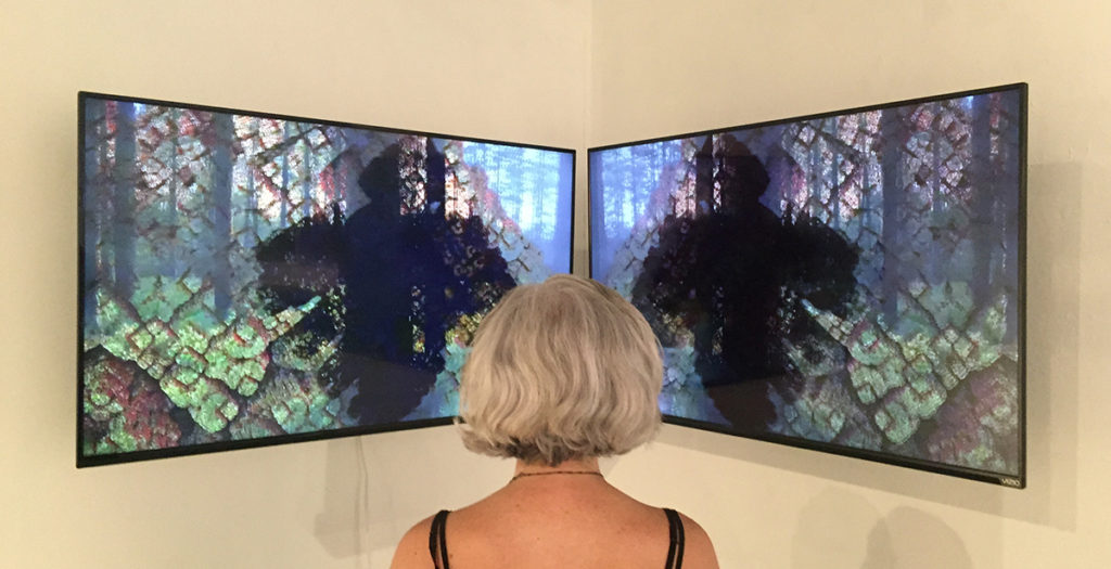 Keith Roberson in collaboration w/Calvin Jones (audio), Appalachicola morning ride – fractional journey #1, 2015, dual-channel video installation
