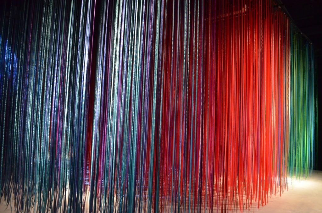 """""""Pathless Woods"""" is Anne Patterson's latest mixed-media, interactive installation."""""""